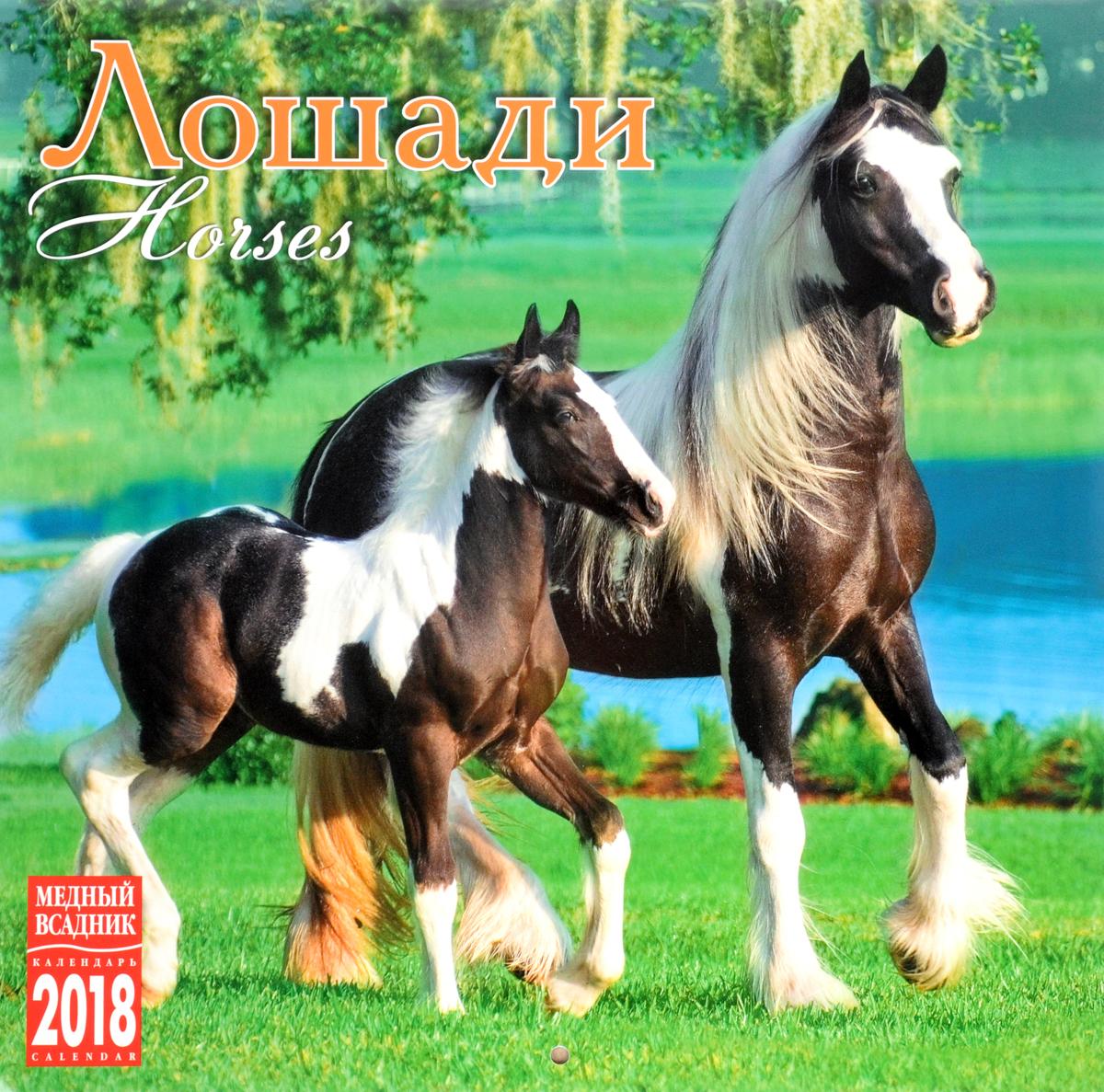 Календарь 2018 (на скрепке). Лошади / Horses