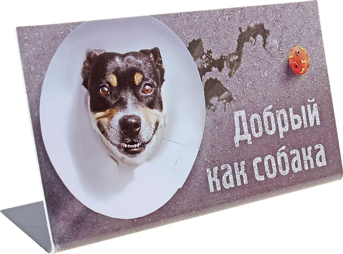 Табличка на стол Добрый, как собака, 15 х 8,5 см537469Оригинальная настольная табличка из пластика сообщит всем посетителям наиполезнейшую информацию с легким оттенком юмора. Этот симпатичный аксессуар разрядит напряженную обстановку в офисе, украсит трудовые будни, вызовет улыбку и вообще послужит отличным подарком.
