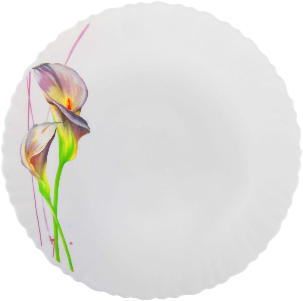 Тарелка обеденная Доляна Дивные каллы, диаметр 26 см1152122Тарелка Доляна с природными мотивами в оформлении разнообразит интерьер кухни и сделает застолье самобытным и запоминающимся. Качественное стекло не впитывает запахов, гладкая поверхность обеспечивает легкость мытья.Делайте любимый дом уютнее!Рекомендуется избегать использования абразивных моющих средств.