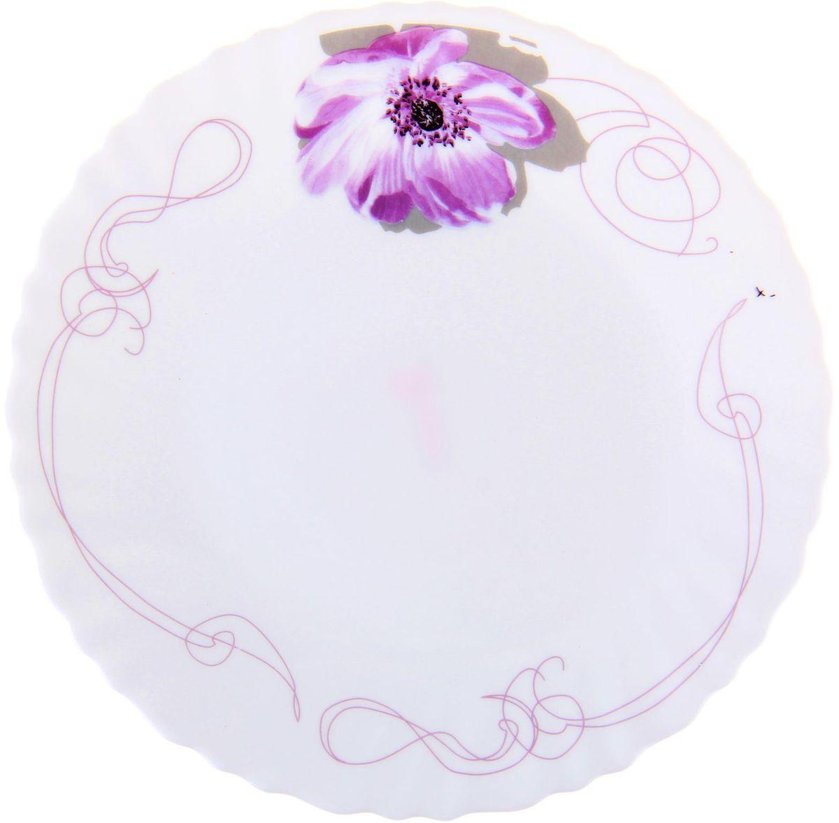 Тарелка Сиреневое блаженство, диаметр 26 см1152124Тарелка – важнейший предмет любого застолья. Будучи во главе стола, она привлекает к себе основное внимание. А это значит – рисунок, цвет и материал играют немаловажную роль.Почему во всем мире так ценится посуда из стеклокермики?Универсальна. Ее можно использовать и для приготовления пищи, и для безопасного хранения любых готовых блюд. В такой посуде можно кипятить, варить, жарить парить, тушить и запекать любые продукты.Ударопрочна и травмобезопасна. Термическое стекло – очень прочный материал, который не поддается механическим нагрузкам, не бьется, не колется и не трескается.Термически устойчива (жаропрочна). Посуда не деформируется при нагреве и подходит для СВЧ-печей.Химически инертна. Стеклянные поверхности посуды совершенно нечувствительны к воздействию моющих и чистящих средств.Экологически и гигиенически безопасна. Стеклокерамика – исключительно «чистый» материал, не выделяющий вредных летучих соединений даже при сильном нагреве, не впитывает запахов и не передает их хранящейся или готовящейся пище.Удобна в уходе. Моется обычной теплой водой, не формирует накипь и нагар.Эстетически привлекательна. Прозрачное, матовое и тонированное термическое стекло имеет оригинальный вид, который сохраняется в любых технических условиях на долгие годы.