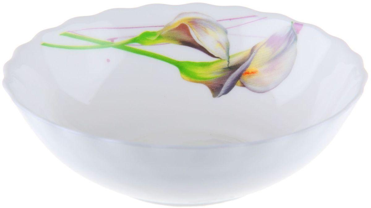 Салатник Доляна Дивные каллы, диаметр 20 см1152145Салатник – важнейший предмет любого застолья. Будучи во главе стола, салатник привлекает к себе основное внимание. А это значит – он должен быть красивым.Почему во всем мире так ценится посуда из стеклокермики?Универсальна. Ее можно использовать и для приготовления пищи, и для безопасного хранения любых готовых блюд. В такой посуде можно кипятить, варить, жарить парить, тушить и запекать любые продукты.Ударопрочна и травмобезопасна. Термическое стекло – очень прочный материал, который не поддается механическим нагрузкам, не бьется, не колется и не трескается.Термически устойчива (жаропрочна). Посуда не деформируется при нагреве и подходит для СВЧ-печей.Химически инертна. Стеклянные поверхности посуды совершенно нечувствительны к воздействию моющих и чистящих средств.Экологически и гигиенически безопасна. Стеклокерамика – исключительно «чистый» материал, не выделяющий вредных летучих соединений даже при сильном нагреве, не впитывает запахов и не передает их хранящейся или готовящейся пище.Удобна в уходе. Моется обычной теплой водой, не формирует накипь и нагар.Эстетически привлекательна. Прозрачное, матовое и тонированное термическое стекло имеет оригинальный вид, который сохраняется в любых технических условиях на долгие годы.