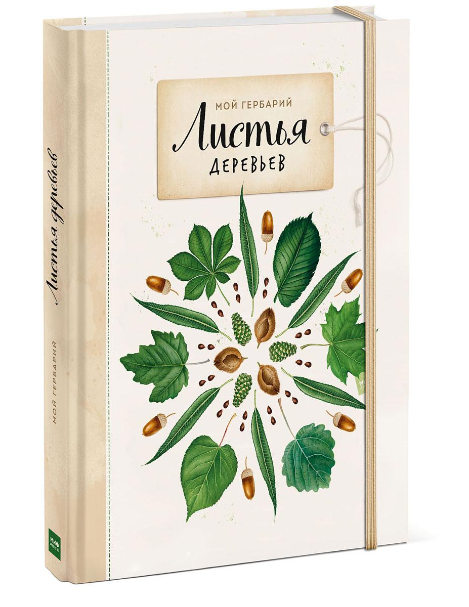 Анна Васильева Мой гербарий. Листья деревьев анна васильева мой гербарий листья деревьев