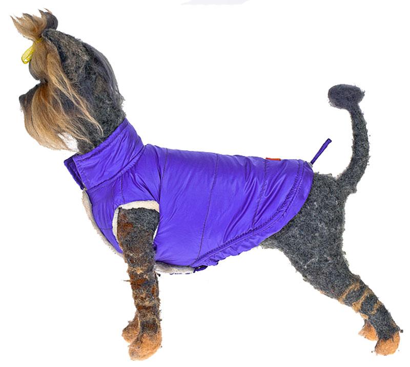 Жилет для собак Happy Puppy Андорра, унисекс, цвет: сиреневый. Размер 6HP-160055-6Теплый жилет для собак Happy Puppy Андорра отлично подойдет для прогулок в прохладное время года. Жилет изготовлен из полиэстера с водоотталкивающей пропиткой, на подкладке используется искусственный мех, который обеспечивает отличный воздухообмен.Жилет застегивается на кнопки, благодаря чему его легко надевать и снимать. Низ изделия и высокий воротник дополнены шнурками-утяжками со стопперами.Благодаря такому комбинезону простуда не грозит вашему питомцу, и он сможет испытать не сравнимое удовольствие от прогулок.Одежда для собак: нужна ли она и как её выбрать. Статья OZON Гид