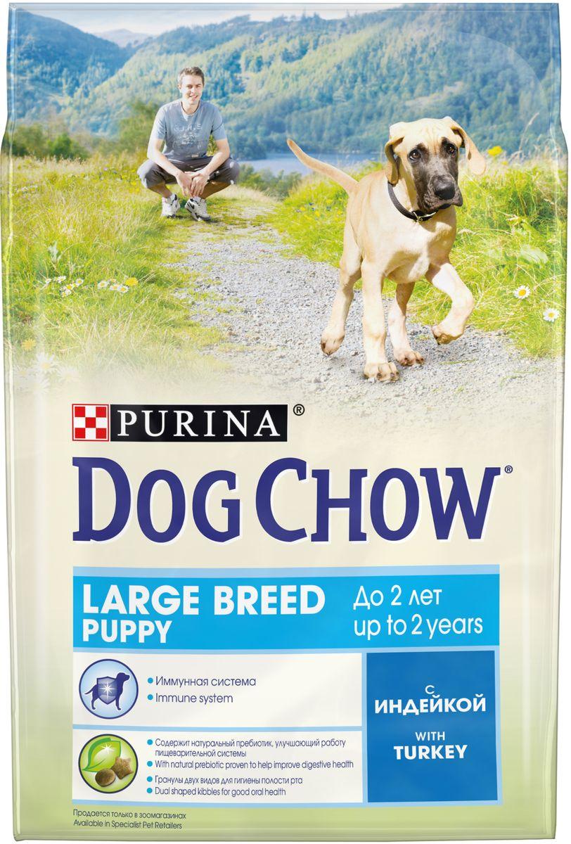 Сухой корм Dog Chow для щенков крупных пород до 2 лет, с индейкой, 2,5 кг корм dog chow senior ягненок 2 5kg для собак старше 9 лет 12308782