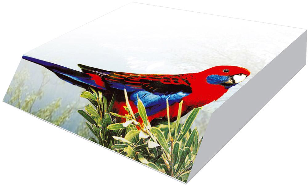 Фолиант Блок для записей Попугай 9 х 11 см 300 листовБКД-300С/4Блок бумаги Фолиант Попугай идеально подходит для быстрой фиксации информации. Блок бумаги выполнен с декоративным срезом, с проявлением отпечатанного изображения на торце.Блок бумаги изготовлен на картонной подложке, листы проклеены по торцу. Благодаря специальной проклейки, листы блока не рассыпаются. Порядок на столе гарантирован. Печать на листах добавит вам хорошего настроения. Особенности - наличие декоративного среза; листы склеены в блок.