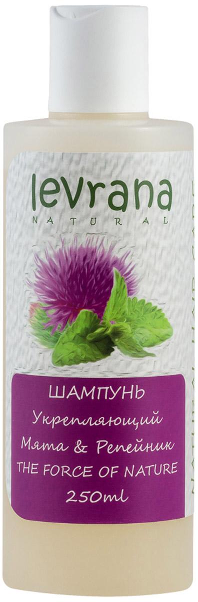 Levrana Шампунь Мята и Репейник, 250 мл levrana шампунь для нормальных волос дикая роза 250 мл