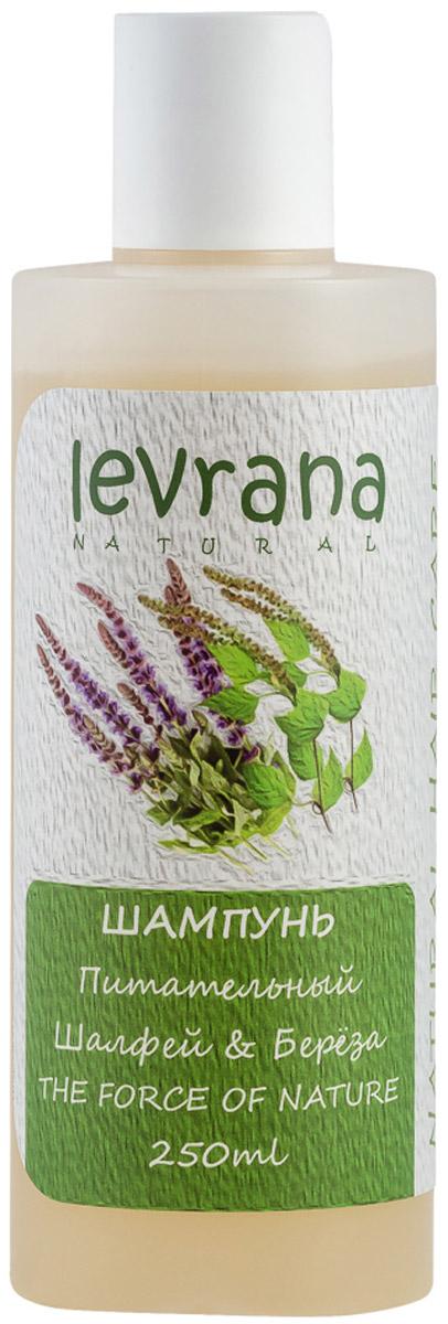 Levrana Шампунь Шалфей и Берёза, 250 мл levrana шампунь для нормальных волос дикая роза 250 мл