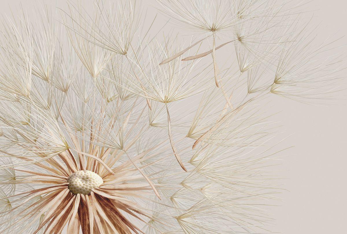 Фотообои флизелиновые Milan Свежий ветер, текстурные, 4 х 2,7 мM 456Текстурные флизелиновые фотообои Milan Свежий ветер позволят создать неповторимый облик помещения, в котором они размещены. Milan — дизайнерская коллекция фотообоев и фотопанно европейского качества, созданная на основе последних тенденций в мире интерьерной моды. Еще вчера эти тренды демонстрировались на подиумах столицы моды, а сегодня они нашли реализацию в декоре стен. Фотообои Milan реализуют концепцию доступности Моды для жителей больших и маленьких городов. Фотообои Milan — мода для стен, доступная каждому! Монтаж: Клеи Quelid Murale, Хенкель Metylan Овалид Т и Pufas Security GK10 . Принцип монтажа: стык в стык.