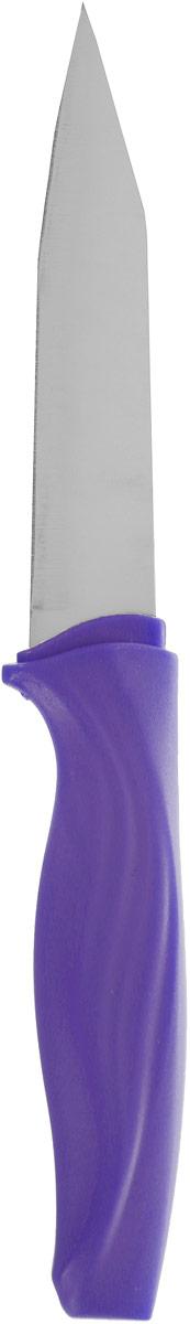 Нож для чистки овощей Доляна Оберон, цвет: фиолетовый, серый, длина лезвия 9 см1702346_фиолетовый, серыйНож для чистки овощей Доляна Оберон, изготовленный из высококачественного металла, оснащен пластиковой ручкой. Нож идеален для нарезки овощей и фруктов. Изделие предназначено для профессионального и домашнего использования. В нем отлично сбалансированы лезвия и ручка, позволяя резать быстрее и комфортнее. Лезвие ножа не впитывает запахи, оставляя натуральный вкус продуктов.Общая длина ножа: 19 см.