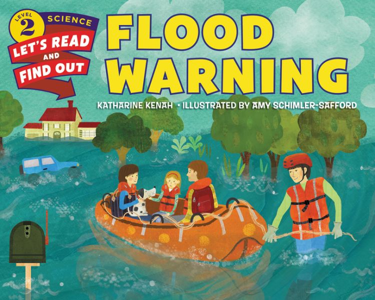 Flood Warning katharine bagshaw core auditing standards for practitioners