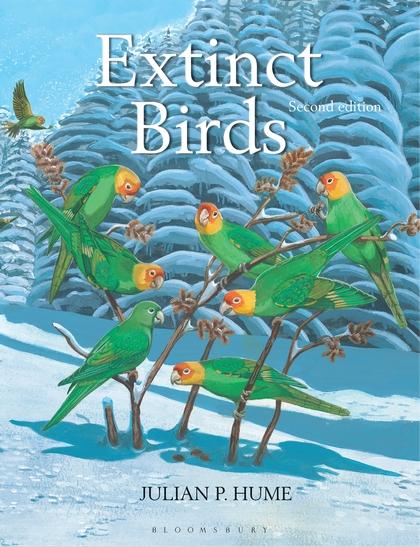 Extinct Birds the dodos the dodos visiter