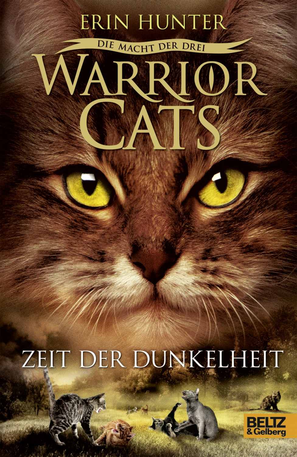 Warrior Cats, Die Ma...