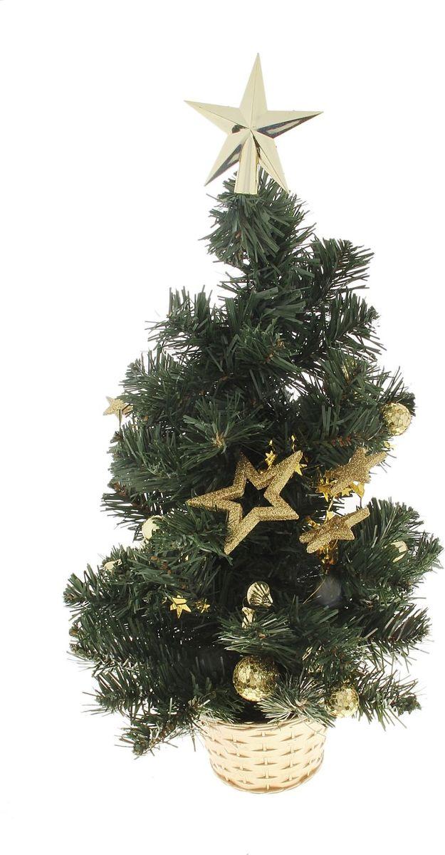 Елка настольная, цвет: зеленый, 50 см. 703464703464Пушистые веточки, оригинальные гирлянды из ракушек и звездочек создадут новогоднее настроение. Такую ель не нужно украшать – она уже нарядная. А благодаря аккуратному горшочку, в который помещена елочка, она станет прекрасным украшением любого интерьера.Новый год – любимый праздник многих. В преддверии этого чудесного времени преображается все вокруг – улицы, дома и даже люди, окружающие нас. Преобразите и вы свой дом. Отличной помощницей вам в этом станет елка декорированная Золотые звезды.