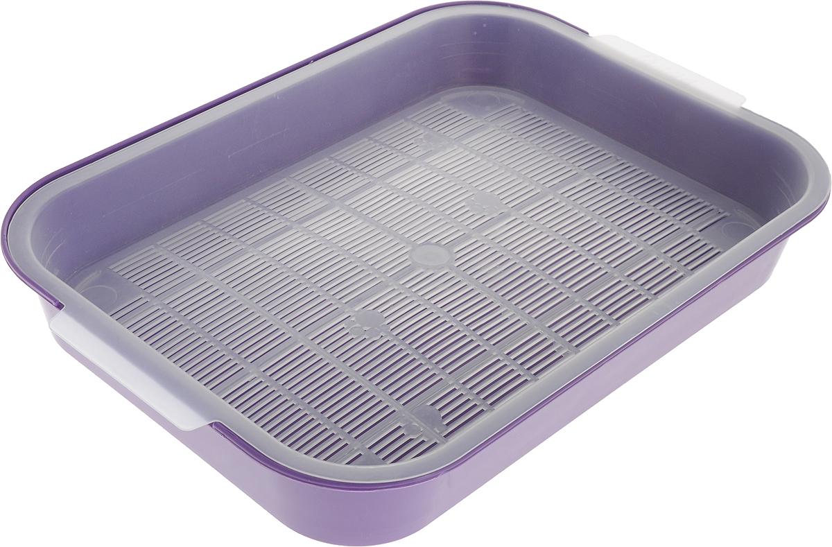 Туалет для кошек Гамма, с сеткой, цвет: фиолетовый, 40 х 28 х 6 смПГ-08100_фиолетовыйТуалет для кошек Гамма изготовлен из прочного пластика и снабжен специальной съемной сеткой. Кошачий туалет с сеткой предпочитают многие любители домашних кошек, благодаря тому, что его можно использовать без наполнителя. Сетка расположена выше дна, и лапки вашей кошки останутся сухими. Если вы все же хотите использовать наполнители, то для данного типа туалетов не рекомендуется комкующийся бентонит, так как он может налипнуть на сетку, и отчистить ее будет сложно.