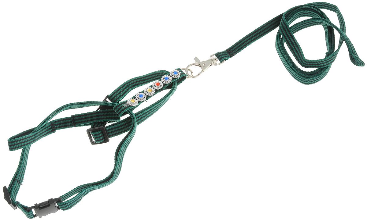 Комплект для кошек GLG Восьмерка, цвет: зеленый, черный, 2 предмета комплект для уборки альтернатива комфорт жесткая щетина цвет синий 2 предмета