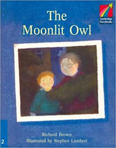 Moonlit Owl the use of song lyrics in teaching english tenses