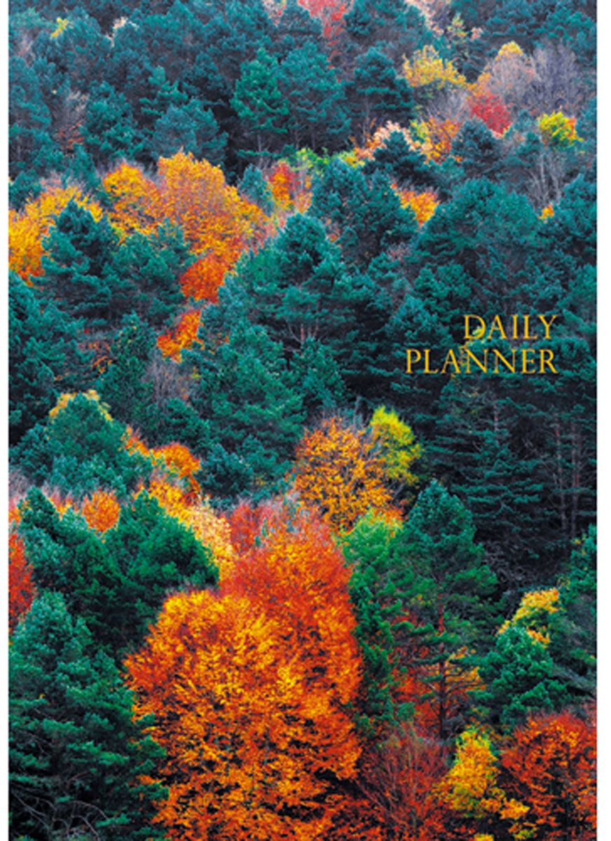 Канц-Эксмо Ежедневник Пейзаж Панорама леса недатированный 152 листа формат А5 listoff ежедневник мегаполис недатированный 152 листа