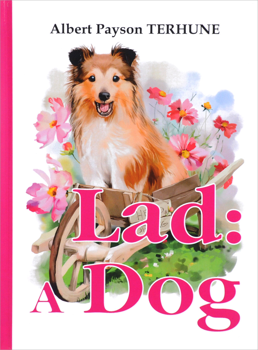 Albert Payson Terhune Lad: A Dog albert ayler albert ayler in greenwich village