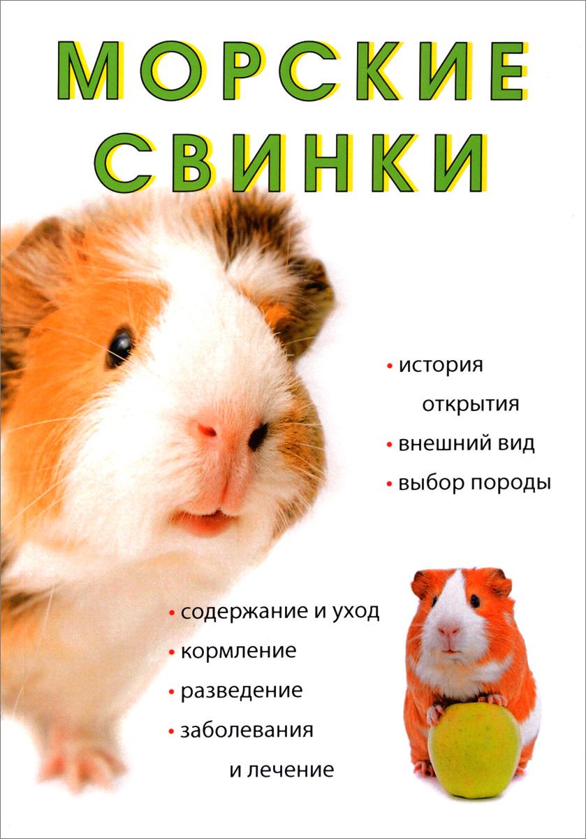 Л. Миронов Морские свинки рахманов а морские свинки породы содержание и уход кормление разведение