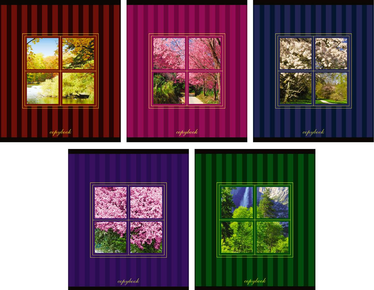 КТС-Про Набор тетрадей Вид из окна 48 листов в клетку 5 штС1830-00Комплект общих тетрадей из 5шт., Ассорти ВИД ИЗ ОКНА - 48 листов формата А5. Внутренний блок - высокачественная офсетная бумага. Линовка в стандартную голубую клетку , поля красного цвета. Обложка -мелованный картон. Двойная обложка и вырубное окошко позволяют по новому взглянуть на дизайн тетрадей.