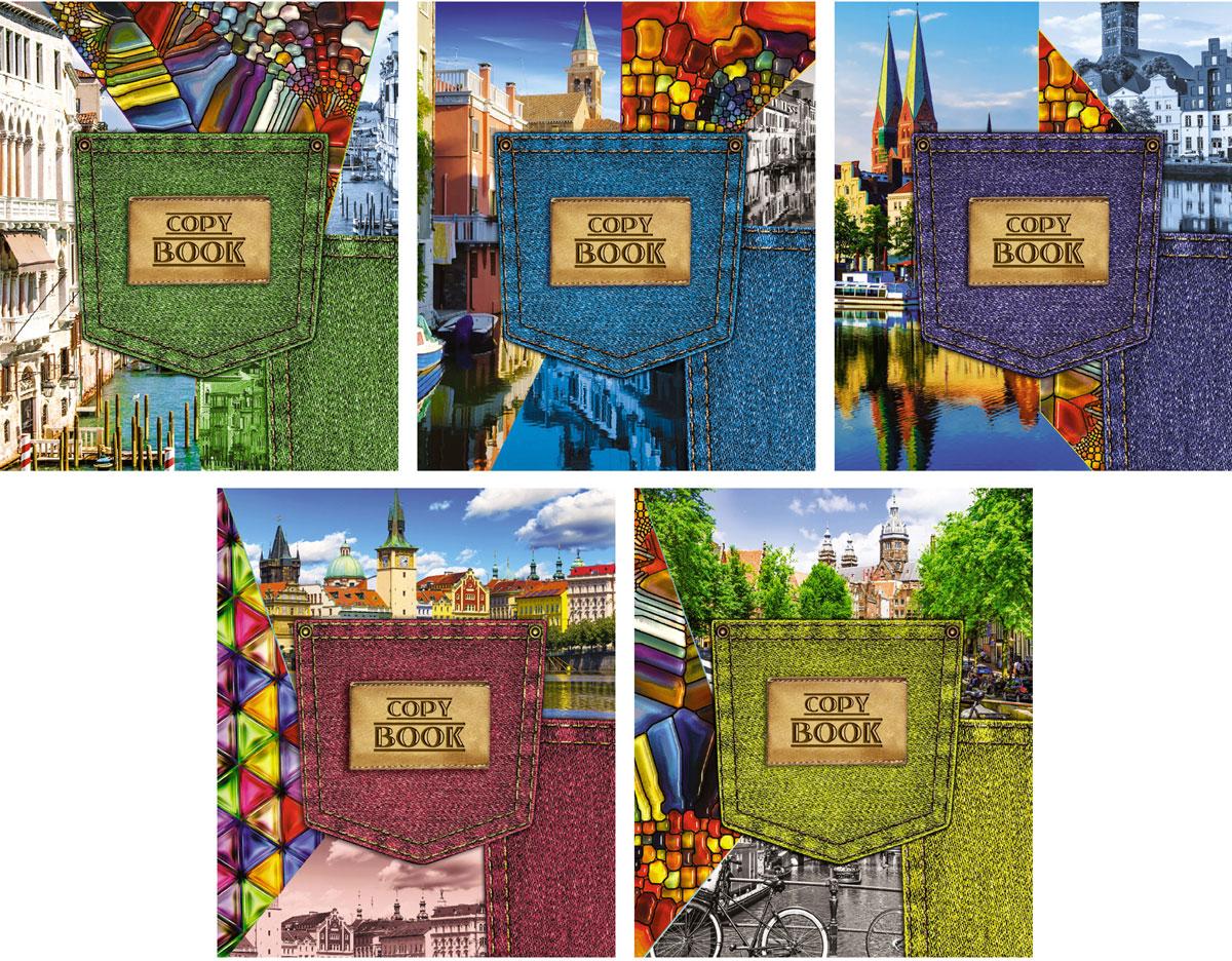 КТС-Про Набор тетрадей Джинсовый стиль 48 листов в клетку 5 штС4067-01Комплект общих тетрадей Джинсовый стиль состоит из 5 тетрадей формата А5. Внутренний блок выполнен из высококачественной офсетной бумаги и содержит 48 листов в стандартную голубую клетку с красными полями. Обложка выполнена из целлюлозного картона, оформленного выборочным лаком с блестками. Обложки тетрадей предлагают простые и одновременно идеальные джинсовые композиции.