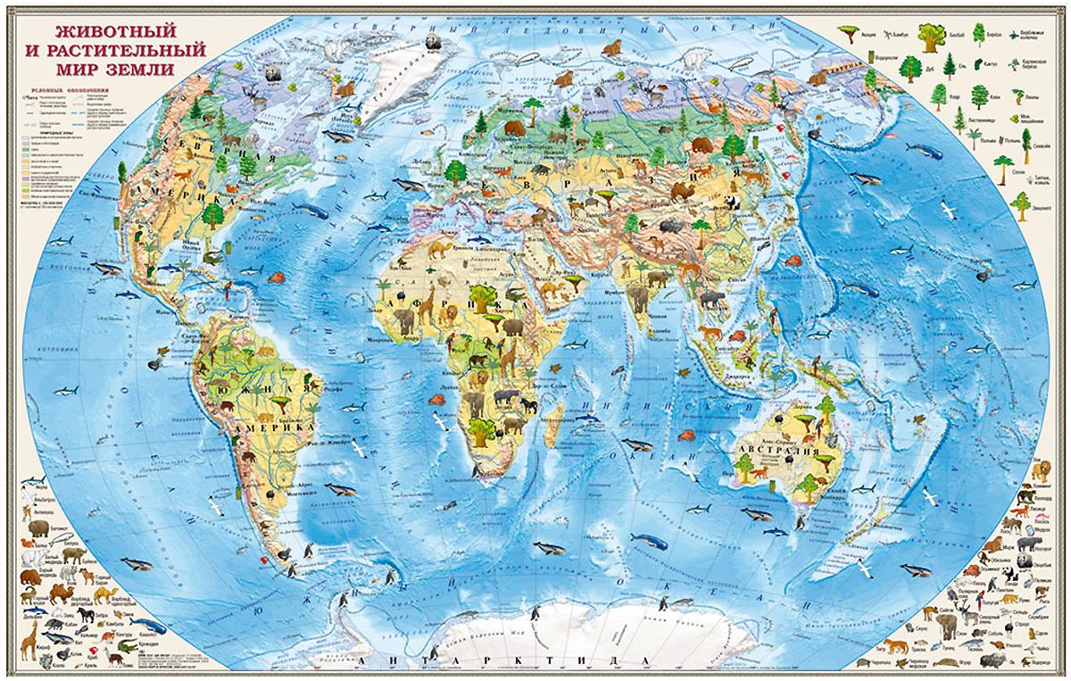 Животный и растительный мир Земли. Карта