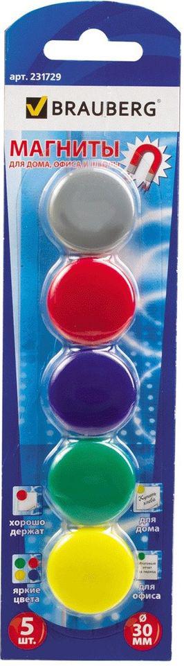 Brauberg Магнит для досок 3 см 5 шт231729Разноцветные магниты помогут надежно прикрепить листы бумаги к магнитно-маркерной поверхности досок, витрин и флипчартов. Надежно удерживаются на любой железной или стальной поверхности.