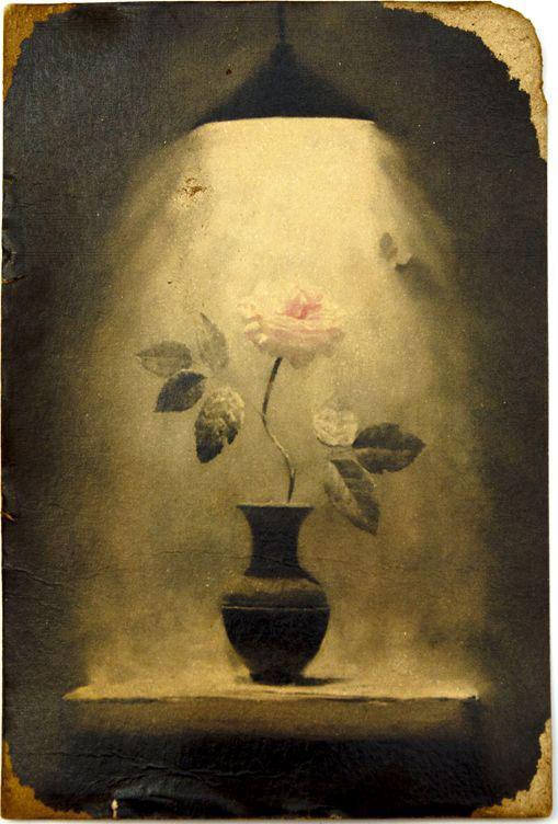 Открытка Роза под лампой. Авторская работа. Ц2 конверт открытка студия тетя роза бабочки ораз 0029