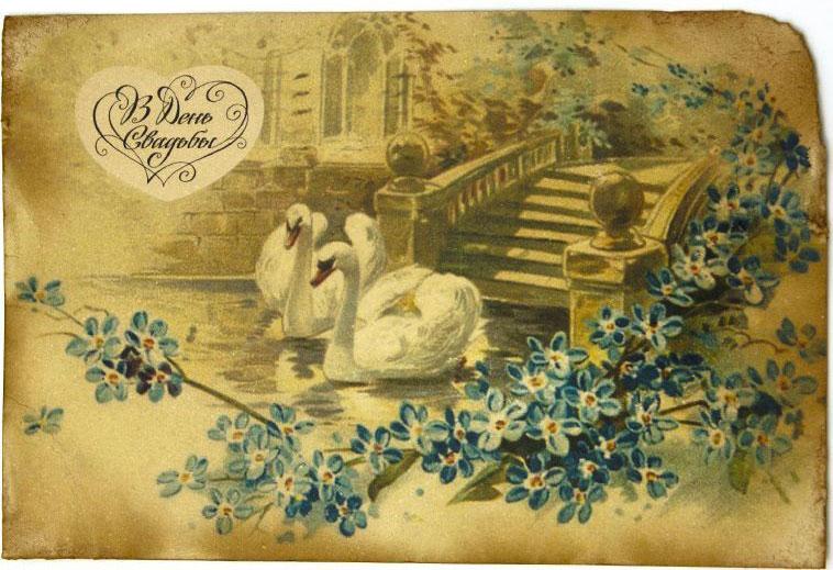 Открытка Влюблённые лебеди в пруду у старой лестницы. Авторская работа. С3С3