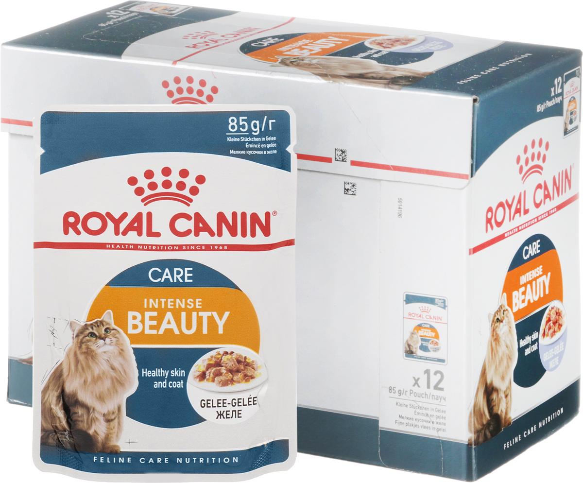 Консервы Royal Canin  Intense Beauty , для поддержания красоты шерсти кошек, мелкие кусочки в желе, 85 г, 12 шт - Корма и лакомства