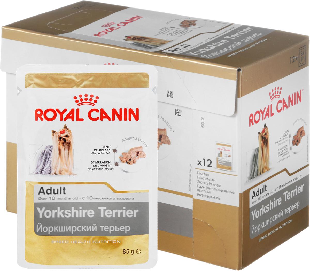 Консервы Royal Canin Yorkshire Terrier Adult, для собак породы йоркширский терьер старше 10 месяцев, паштет, 85 г, 12 шт60580Консервы Royal Canin Poodle Adult специально созданы для собак породы йоркширский терьер в возрасте старше 10 месяцев. Йоркширский терьер - это сказочное создание, которое очаровывает с первой минуты знакомства с ним. Тоненькие, хрупкие и изящные йорки в силу своей физиологии нуждаются в максимальном поступлении в организм аминокислот, необходимых для развития шерсти и ее быстрого роста. Здоровая шерсть. Эксклюзивная формула поддерживает здоровье и красоту шерсти йоркширского терьера. Вкусовая привлекательность. Благодаря высокой вкусовой привлекательности корм способен удовлетворить потребности даже самых привередливых собак.Особый комплекс с питательными веществами помогает сохранить здоровье собаки в зрелом возрасте и способствует долголетию. Состав: мясо и мясные субпродукты, злаки, субпродукты растительного происхождения, масла и жиры, минеральные вещества, углеводы. Добавки (в 1 кг): витамин D3: 195 ME, железо: 13 мг, йод: 0,22 мг, марганец: 4,1 мг, цинк: 41 мг.Товар сертифицирован.