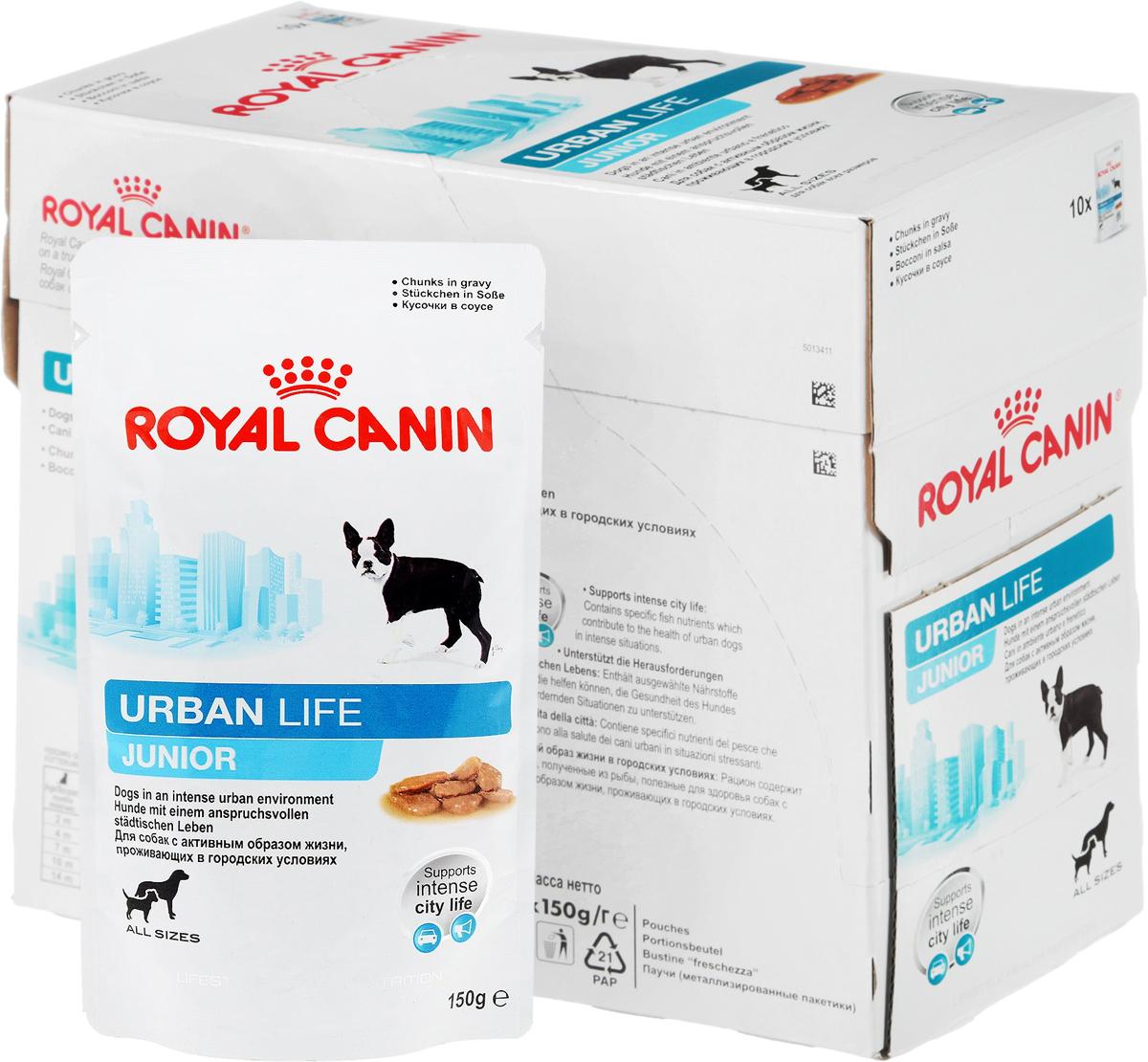 Консервы Royal Canin Urban Life Junior, для щенков, живущих в городских условиях, мелкие кусочки в соусе, 150 г, 10 шт57331Консервы Royal Canin Urban Life Junior - это полнорационный корм для щенков в возрасте до 10-15 месяцев, живущих в городских условиях.Поддержка в городской среде. Urban Life Junior содержит уникальный комплекс антиоксидантов, помогающий собакам, живущим в городе, справляться с оксидативным стрессом, вызванным загрязнением окружающей среды. Продукт содержит ценные питательные вещества из рыбного сырья, которые также способствуют поддержанию здоровья городской собаки, часто сталкивающейся со стрессовыми ситуациями (городской шум, скопления людей,автомобильное движение).Гармоничный рост. Точно выверенный баланс питательных веществ отвечает энергетическим потребностям щенка. Продукт содержит пребиотики и высококачественные белки (L.I.P.*), поддерживающие здоровье пищеварительной системы.Естественная защита. Продукт содержит антиоксиданты, способствующие развитию механизмов естественной защиты щенка. Состав: мясо и мясные субпродукты, рыба и рыбные субпродукты, злаки, субпродукты растительного происхождения, масла и жиры, минеральные вещества, источники углеводов, дрожжи. Добавки (в 1 кг): Витамин D3: 123 ME, Железо: 12 мг, Йод: 0,35 мг, Медь: 2,8 мг, Марганец: 3,7 мг, Цинк: 37 мг.Товар сертифицирован.