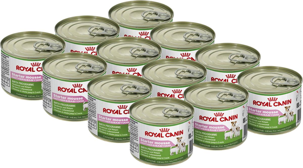 Консервы Royal Canin  Starter Mousse , для щенков и кормящих собак, 195 г, 12 шт - Корма и лакомства