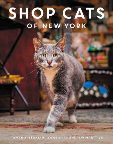 Shop Cats of New Yor...