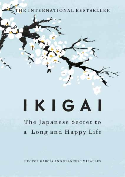 Ikigai the problem of youth unemployment and possible reasons behind it