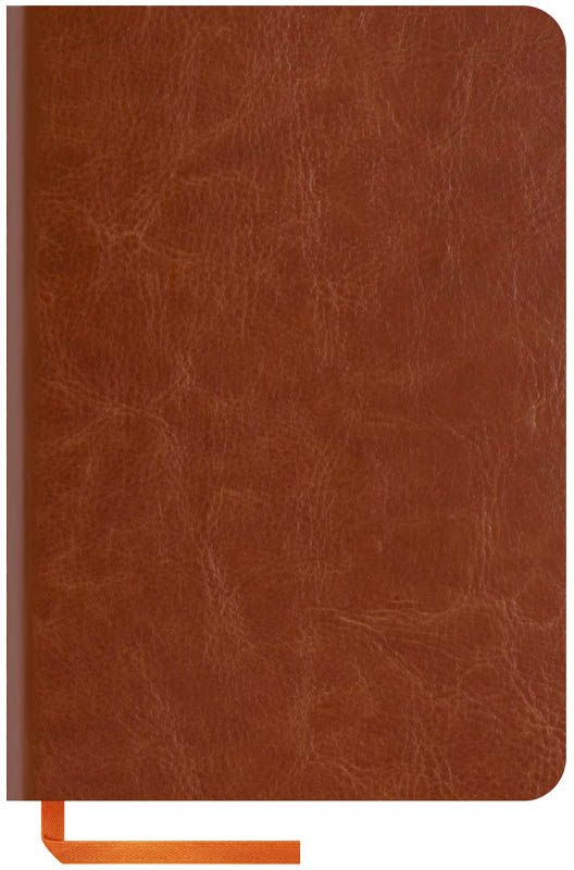 OfficeSpace Записная книжка Nebraska Soft 120 листов в клетку цвет коричневый формат A6N6s_6905Стильная записная книжка с ярким цветным срезом и ультра-мягкой обложкой из 2 слоев высококачественного кожзаменителя. Подходит под персонализацию. Внутренний блок из высокачественной тонированной офсетной бумаги 70 г/м2, клетка, пантонная печать. Прошитый блок. Срез блока, форзацы, закладка-ляссе и каптал - оранжевые. Индивидуальная упаковка.