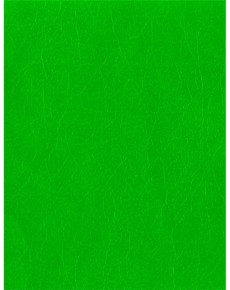 Канц-Эксмо Тетрадь 160 листов в клетку цвет салатовыйПБ16018Тетрадь А5 160л. на кольцах, бумвинил, корешок квадратный, со сменным блоком, 2 блока по 80л. Офсет 60г/м2, Салатовый (бумвинил)