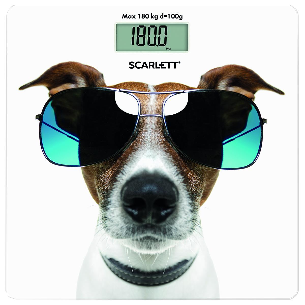 Scarlett SC-BS33E090, Cool Dog весы напольныеSC-BS33E090Напольные весы Scarlett SC-BS33E090 имеют ультратонкий дизайн (5 мм), выполнены из качественного высокопрочного стекла. Весы - это простой и удобный способ контролировать свой вес. Максимальная нагрузка на данную модель может составлять 180 кг.При перегрузе загорится предупреждающий сигнал. Также специальная индикация сообщит пользователям о необходимости замены элемента питания. Чтобы весы начали работать, достаточно просто встать на них. После взвешивания прибор отключится самостоятельно.Модель оснащена прорезиненными ножками для предотвращения скольжения и высокочувствительными датчиками.Питание: одна батарейка типа 3V CR2032 (включена в комплект).