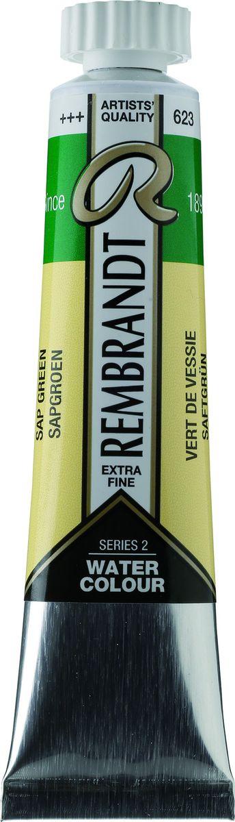 Royal Talens Акварель Rembrandt цвет 623 Зеленый травяной 20 мл