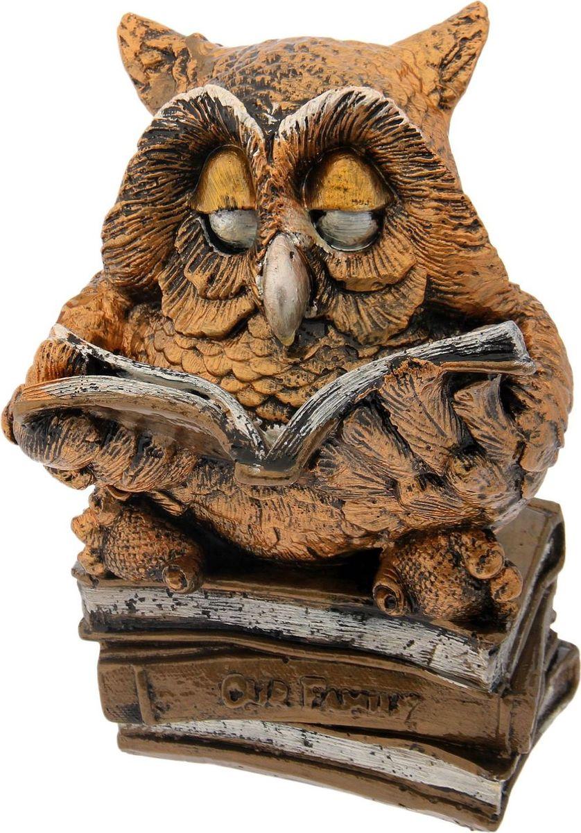 Копилка Premium Gips Читающая сова, 20 х 19 х 25 см1184685Если вы стремитесь приумножить свои доходы, поместите копилку с пернатым товарищем в спальню. Складывайте в неё монетки любого достоинства, и будете приятно удивлены накопленной суммой. Птицы являются олицетворением полёта души, любви, счастья, а также вдохновляют на развитие, процветание и оптимизм.