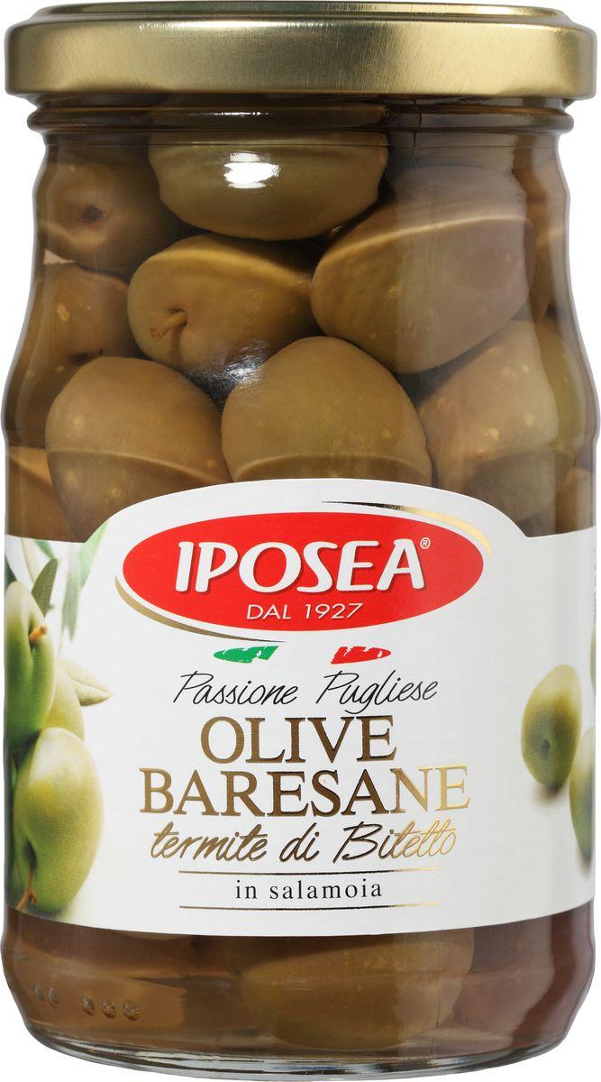 Iposea оливки барийские Термите ди Битетто, 280 гМС-00008848Барийские оливки сорта Iposea Термите ди Битетто не нуждаются в представлении. Оливки из региона города Бари, что следует из названия, ценятся за незабываемый нежный и хрустящий вкус. Произрастают они, как правило, в небольших фермерских оливковых рощах, которые на протяжении веков передавались по наследству от отца к сыну. Оливки Iposea Термите ди Битетто изготовлены по традиционному апулийскому рецепту, который придает уникальный аромат, сохраняя, нежность вкуса с терпкими нотами, характерными для этого сорта, которые вы узнаете из тысячи. Оливки Термите ди Битетто идеальны в качестве самостоятельной закуски или аперитива, в составе первых блюд аппулийской кухни, вторых блюд на основе рыбы, а также фокаччи и кальцоне. О производителе: Компания Iposea вот уже больше 50 лет специализируется на производстве консервированных продуктов питания. Завод занимает приблизительно 70000 м2, из которых 24000 м2 закрытые помещения. Компания по сей день остается семейной. У руля коммерческих и производственных подразделений стоят члены семьи Мазиелло. Компания имеет сертификаты ISO и IFS. Компания Iposea постоянно обновляет имодернизирует свои линии и методы производства. Основные направления деятельности компании: производство артишоков, каперсов, овощных смесей, фасоли, сушеных томатов и грибов.
