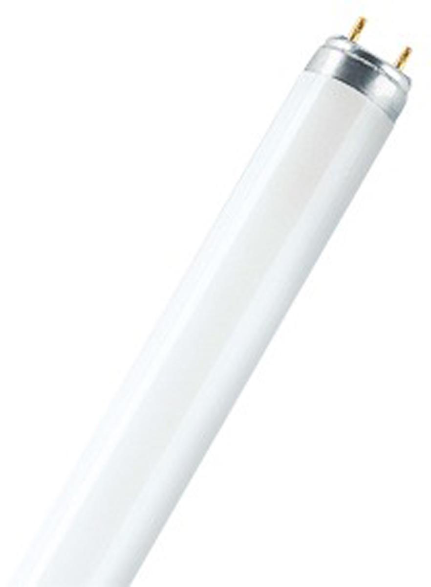 Лампа люминесцентная Osram L 18W/765 G13 дневной свет 40528992090844052899209084Газоразрядный источник света, в котором электрический разряд в парах ртути создаёт ультрафиолетовое излучение, которое преобразуется в видимый свет с помощью люминофора — например, смеси галофосфата кальция с другими элементами. Используют в составе компактных светильников для подсветки прилавков магазинов, кухонных гарнитуров, гардеробных комнат и шкафов, в качестве дополнительного света в общественных помещениях. Средний рабочий ресурс ламп составляет 10000 часов.