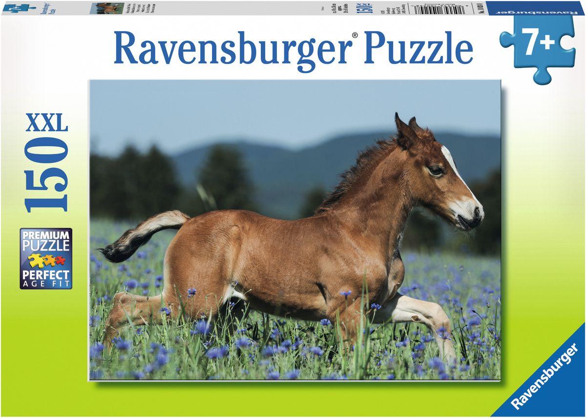 Ravensburger Пазл Молодая лошадь XXL