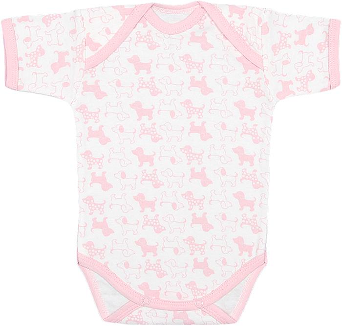 Боди для девочки Чудесные одежки, цвет: белый, розовый. 5893. Размер 745893Детское боди Чудесные одежки с короткими рукавами послужит идеальным дополнением к гардеробу вашего ребенка, обеспечивая ему наибольший комфорт. Боди изготовлено из натурального хлопка, благодаря чему оно необычайно мягкое и легкое. Удобные запахи на плечах и кнопки на ластовице помогают легко переодеть младенца или сменить подгузник. Боди полностью соответствует особенностям жизни ребенка в ранний период, не стесняя и не ограничивая его в движениях. В нем ваш ребенок всегда будет в центре внимания.