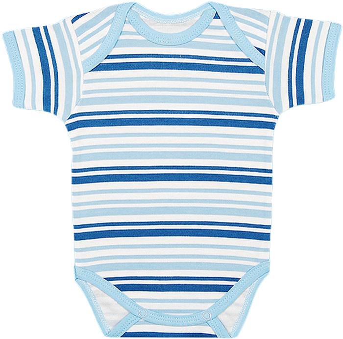 Боди для мальчика Чудесные одежки, цвет: белый, синий. 5893. Размер 745893Детское боди Чудесные одежки с короткими рукавами послужит идеальным дополнением к гардеробу вашего ребенка, обеспечивая ему наибольший комфорт. Боди изготовлено из натурального хлопка, благодаря чему оно необычайно мягкое и легкое. Удобные запахи на плечах и кнопки на ластовице помогают легко переодеть младенца или сменить подгузник. Боди полностью соответствует особенностям жизни ребенка в ранний период, не стесняя и не ограничивая его в движениях. В нем ваш ребенок всегда будет в центре внимания.