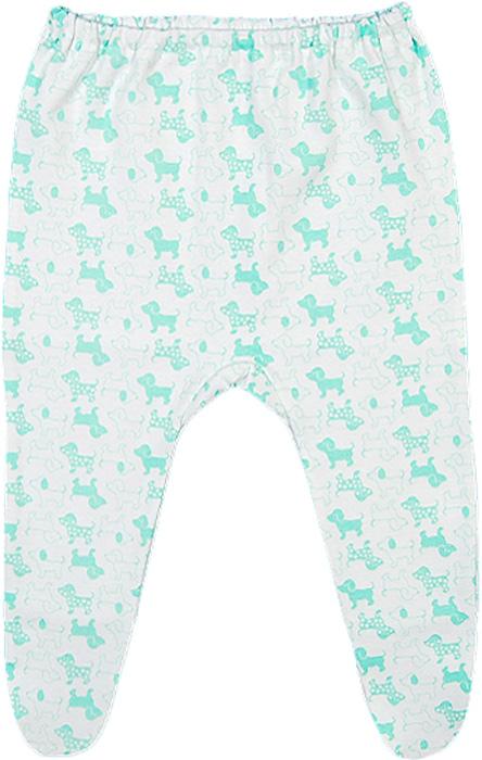 Ползунки для девочки Чудесные одежки, цвет: белый, салатовый. 5286. Размер 565286Ползунки Чудесные одежки выполнены из натурального хлопка, благодаря чему великолепно пропускают воздух и обеспечивают комфорт и удобство, не раздражая нежную детскую кожу. Модель с закрытыми ножками благодаря мягкому эластичному поясу не сдавливают животик младенца и не сползают, идеально подходят для ношения с подгузником.