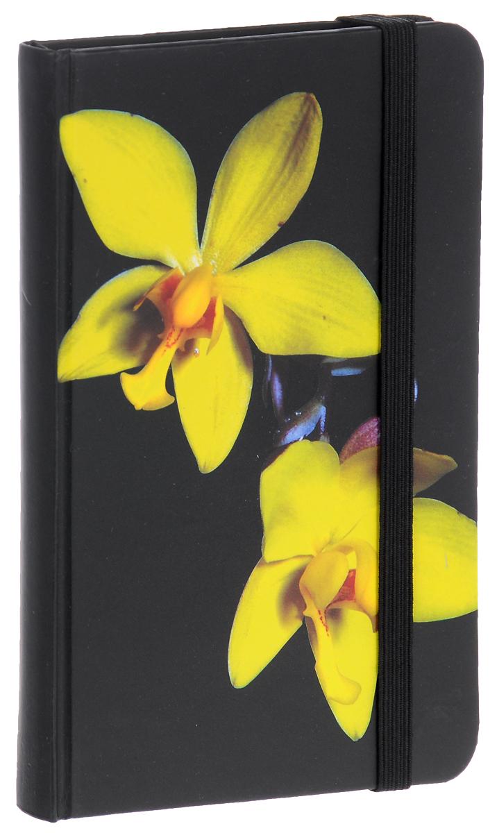 Brauberg Блокнот Цветы 80 листов в клетку цвет черный желтый125743_вид 3Блокнот Brauberg Цветы с изображением прекрасной орхидеи - это символ любви, элегантности и совершенства. Резинка-фиксатор не позволит блокноту открыться в сумочке или портфеле. блокнот внутри имеет бумажный карман и закладку-ляссе. Блокнот содержит 80 листов формата А7 с разметкой в клетку.