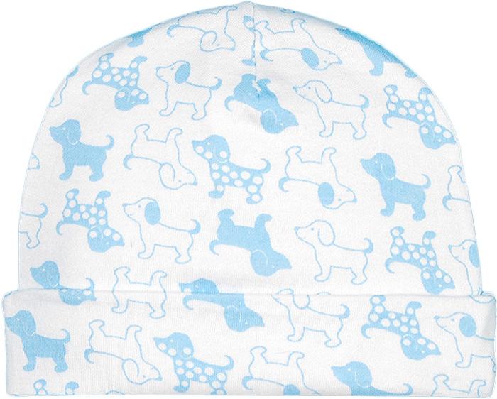 Шапка для мальчика Чудесные одежки, цвет: белый, голубой. 6318. Размер 566318
