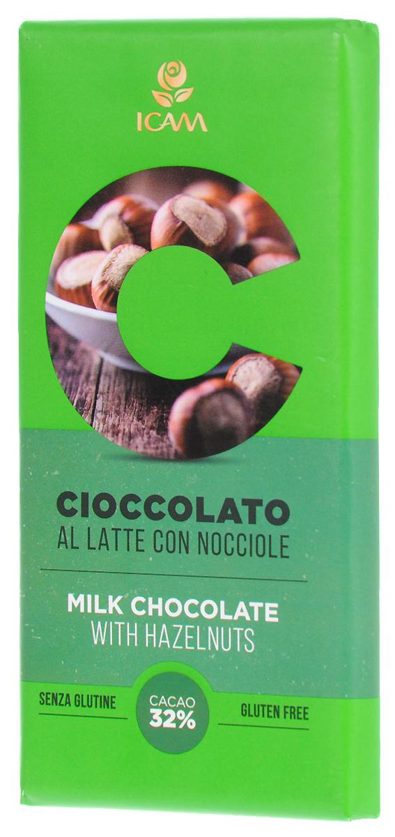 Icam Vanini шоколад классик с лесным орехом молочный 32% какао, 100 г недорого