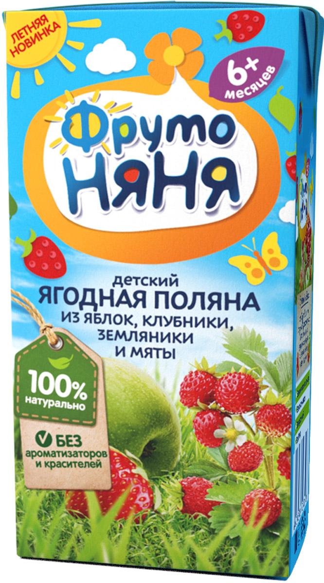 ФрутоНяня сокосодержащий напиток из ягод и мяты с 6 месяцев, 0,2 л